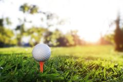 Шар для игры в гольф на тройнике в красивом поле для гольфа с солнечностью утра стоковые изображения