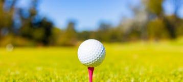 Шар для игры в гольф на тройнике на поле для гольфа стоковое фото