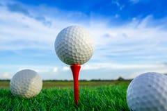 Шар для игры в гольф на тройнике прикрепляет готовое для того чтобы сыграть в зеленой предпосылке стоковое фото