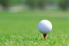 Шар для игры в гольф в траве на поле стоковое изображение rf
