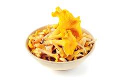 Шар золотого гриба лисички на белизне изолировал backgroun Стоковая Фотография