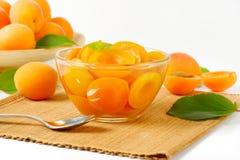 Шар компота абрикоса Стоковое фото RF