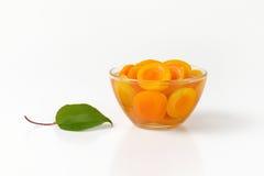 Шар компота абрикоса Стоковая Фотография