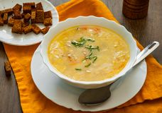 Шар куриного супа с овощами Стоковое фото RF