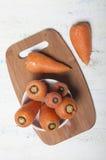 Шар морковей Стоковое Фото