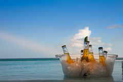 шар пива Стоковое Фото