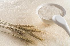 Шар риса с ушами риса на заднем плане стоковые изображения