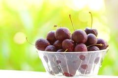Шар сладостной вишни Стоковые Фотографии RF