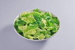 Шар с частью зеленого салата салата Стоковое фото RF