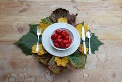 Шар томатов окруженных листьями осени стоковые фотографии rf