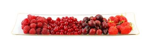 шар ягод Стоковые Фотографии RF
