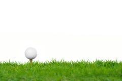 Шар для игры в гольф на зеленой траве стоковое изображение