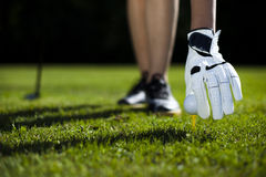Шар для игры в гольф на зеленом луге, водителе стоковое фото rf