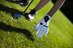 Шар для игры в гольф на зеленом луге, водителе стоковые изображения rf