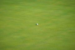 Шар для игры в гольф на зеленом цвете Стоковая Фотография