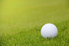 Шар для игры в гольф на курсе стоковое фото