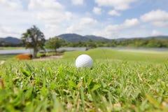 Шар для игры в гольф на курсе стоковое изображение
