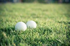 Шар для игры в гольф на траве Стоковое Фото