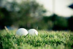 Шар для игры в гольф на траве Стоковая Фотография RF
