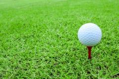Шар для игры в гольф на тройнике в курсе зеленой травы стоковые изображения