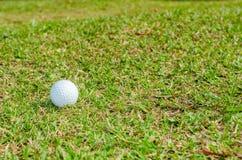 Шар для игры в гольф стоковое фото