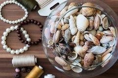 Шар seashells Стоковые Изображения RF