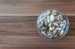 Шар seashells Стоковое фото RF