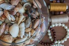 Шар seashells Стоковая Фотография
