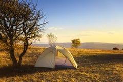 Шатер лагеря стоит в луге около дерева с светом r Стоковая Фотография