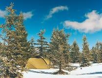 Шатер в ландшафте зимы Trekking шатер, поляки, красные snowshoes на снеге между деревьями стоковая фотография