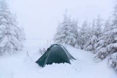 Шатер на лужайке покрытой с снегом Стоковые Изображения