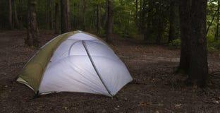 Шатер располагаясь лагерем в лесе стоковые фото