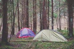 Шатры в лесе Стоковая Фотография RF