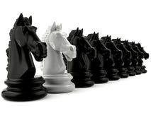 Шахмат белого рыцаря среди шахмат черного рыцаря стоковые изображения rf