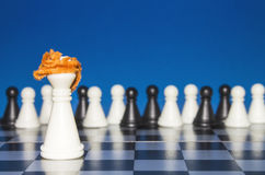 Шахмат как политика 13 Стоковая Фотография