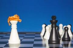 Шахмат как политика 22 Стоковые Изображения RF