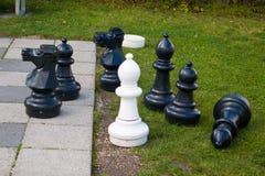 Шахмат на стеклянной предпосылке Стоковые Изображения RF