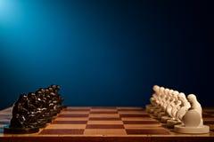 Шахмат сфотографированный на доске Стоковая Фотография RF
