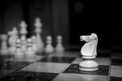 Шахмат сфотографированный на доске Стоковые Фото