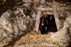 шахта входа старая Стоковые Изображения RF
