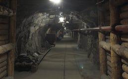 шахта Стоковое Фото