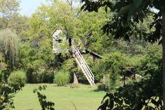 Шалаш на дереве Стоковые Изображения