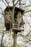 Шалаш на дереве Стоковые Изображения RF
