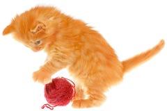 Шаловливый красный с волосами котенок с шариком Стоковая Фотография