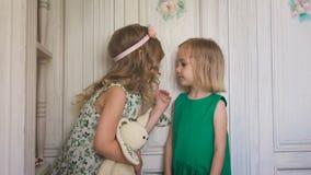 2 шаловливых милых девушки целуя один другого сток-видео