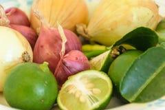 Шалот, чили, лимон, лук стоковые изображения rf