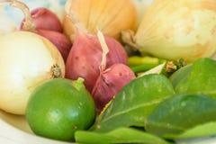 Шалот, чили, лимон, лук стоковые фотографии rf