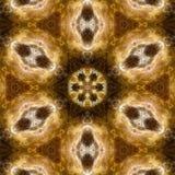 Шальная абстрактная фракталь Стоковые Изображения RF
