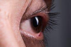 шальной глаз Стоковые Фотографии RF