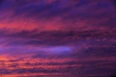 Шальные розовые облака Стоковая Фотография